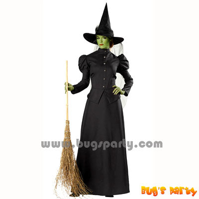 Black color adult Classic Witch costume and hat