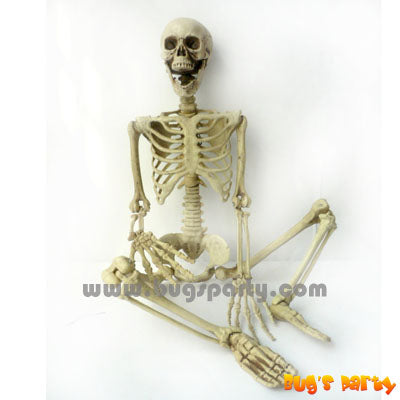 3D Skeleton 36in