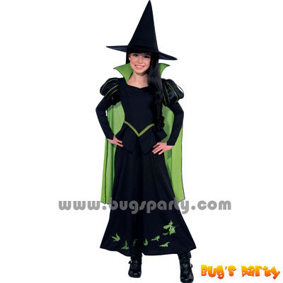 Costume Wizard of Oz Witch