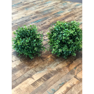 Boxwood Orb Duo