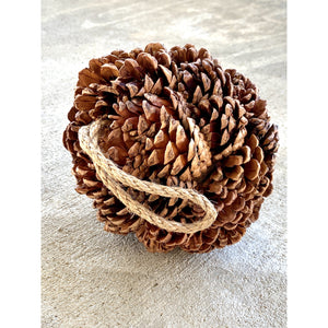 Pine Cone Orb