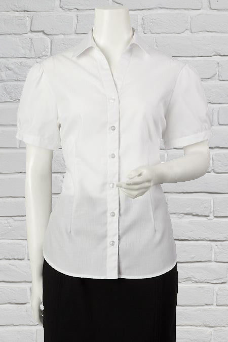 Short Sleeve stripe Blouse for Ladies – White