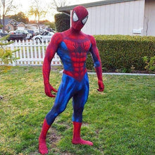 The Amazing Spider-Man & Black Suit Cosplay Costume