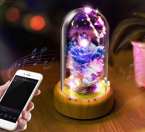 Rose Streamer Bottle LED Night Light / Bluetooth Speaker