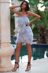 Silver Grey All Over Feather Mini Dress