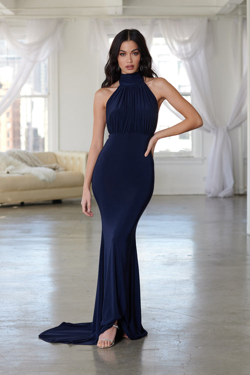 5027da1952d Navy Backless Halterneck Fishtail Maxi Dress