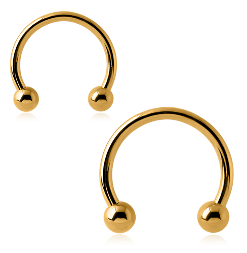 Gold plated Horse shoe