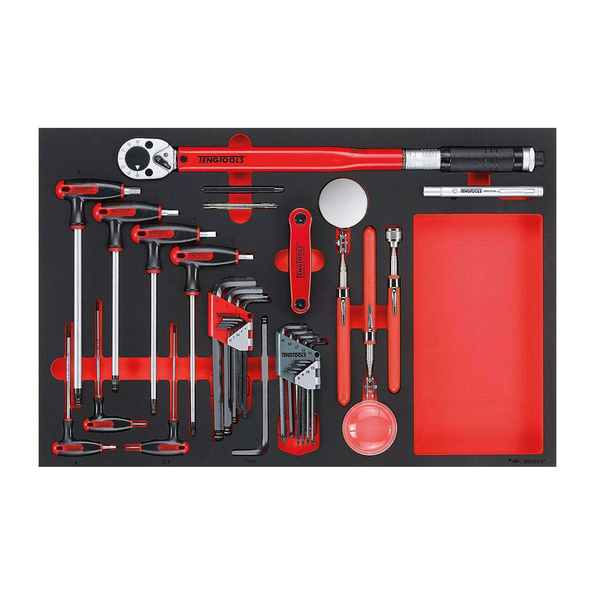 Teng Tools - 17 Piece Hex, Torque and Inspection Set in EVA - TEN-O-TTEX17 - Teng Tools USA