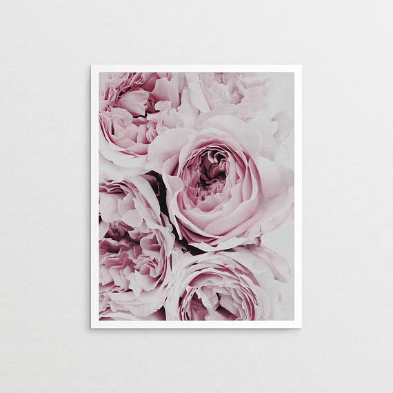Wall Art - Peonies (A-122)