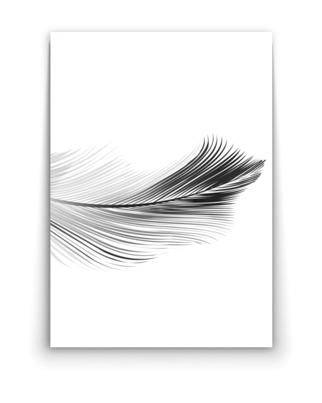 Wall art- Black &White Feather -(A-269)