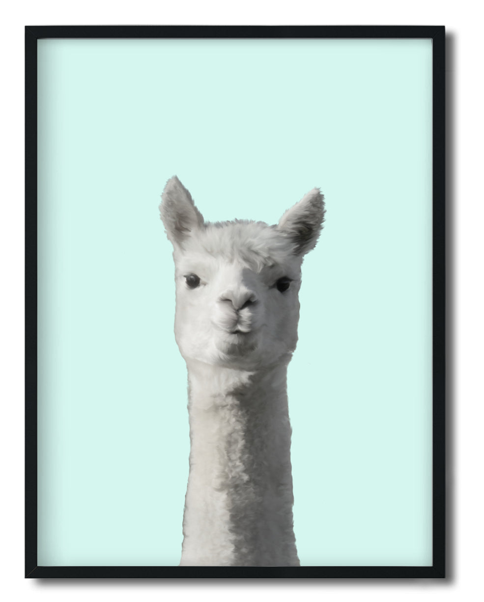 Wall Art -  Llama Mi - Framed / unframed art print (A-455)