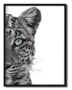Wall Art -  Leopard Print- Framed / unframed art print (A-683)
