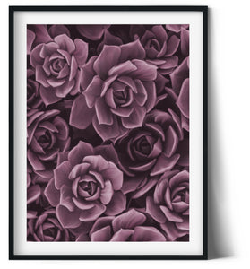 Wall Art -  Blush Floral  (A-482)