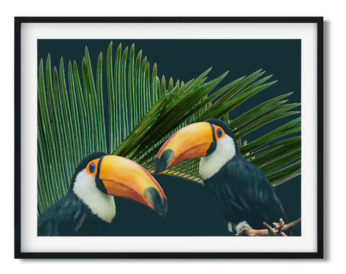 Wall Art -  Colorful Toco Toucans - Framed / unframed art print (A-461)