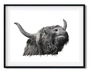 "Wall Art - Highland Cow ""BILL""- Framed / unframed art print (A-727)"
