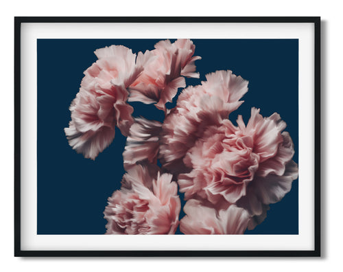 Wall Art -  Romantic Floral On Navy- Framed / unframed art print (A-430)