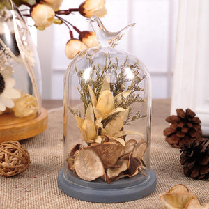 Dried flowers Cloche Table Top Decor (D-133)