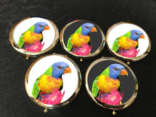 Compact Mirror -Vibrant Parrot on White- (G-51)