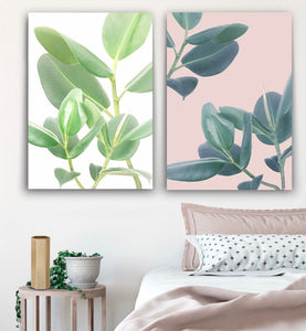 Wall art-  Rubber Plant print -(A-243)