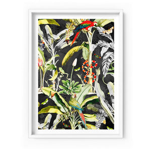 Wall art- Rainforest Tropics Illustration - Art Print (A-855PLT103)