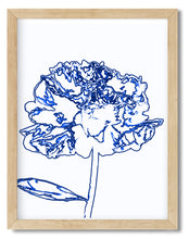 Wall Art - Blue mixed art peony Line Sketch illustration - Framed / unframed art print (A-725)