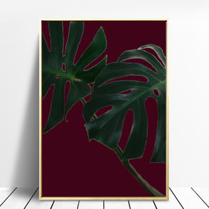 Wall Art -  Monstera Leaves on Burgundy  (A-315)