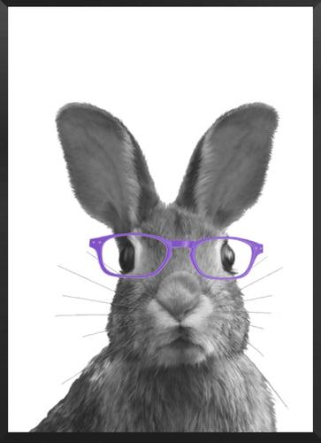 Wall Art -  Harper The Cute Bunny wearing Purple glasses  (A-464)