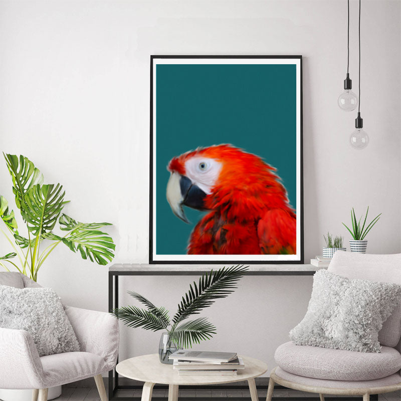 Wall Art - Red Parrot (A-284)