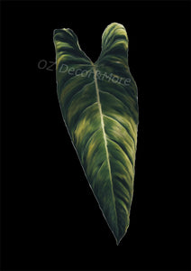 Wall Art - Leaf on Black (A-306)