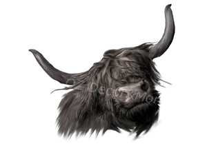 Wall Art -  Highland cow  (A-438)