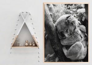 Wall Art - Sleepy Koala B&W  (A-677)