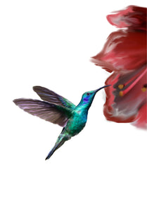 Wall Art -The Hummingbird (A-298)