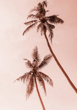 Wall Art - Palm Trees On Blush  (A-389)