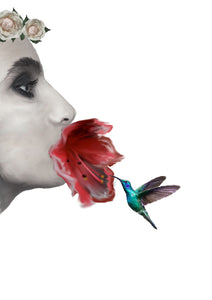 Wall Art -Fleur & The Hummingbird (A-297)