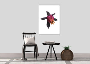 Wall Art -  Flower In Bloom   (A-401)