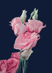 Wall Art -  Pink Roses on Navy Blue (A-674)