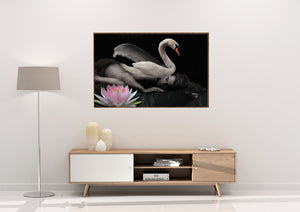 Wall Art -  The Swan - Transformation Series    (A-402)