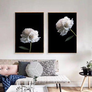 Wall Art - White Peony on Black No.2  (A-300)