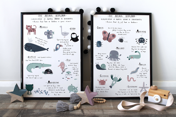 Animal Classification Posters - Twin Set