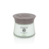 ATTITUDE - Organic Blueberry Wrinkle-Fighting DETOX Mask