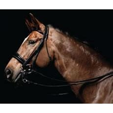 Caldene Bridle Double Dressage Patent Padded C/w Reins - Xfull