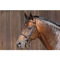 Caldene Bridle Plain Raised C/w Plain Reins - Full / Black