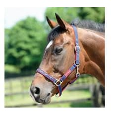 Cottage Craft Headcollar Galaxy - Pony / Navy