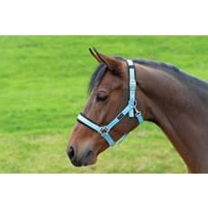 Cottage Craft Headcollar Padded - Small Pony / Aqua