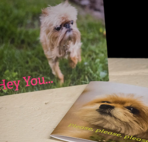 Hairy and Minnie Greeting Cards