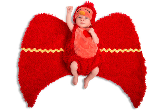 Swaddle Wings Hatchling Bird