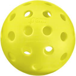 Penn 40 Outdoor Pickleball