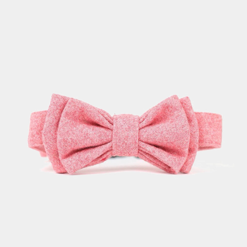 LOVER'S BOW TIE
