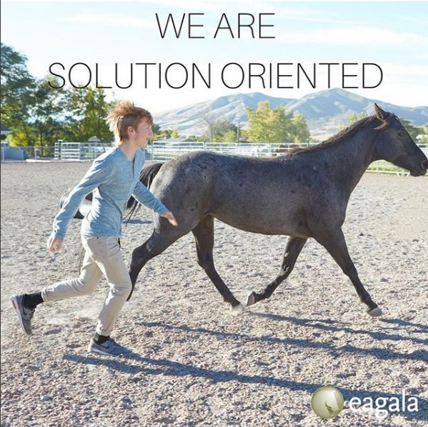 We are solution oriented.