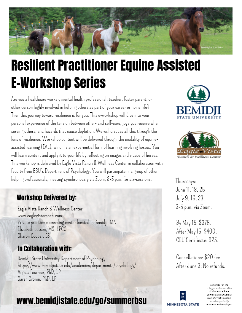 Resilient Practitioner Equine Assisted E-Workshop Series